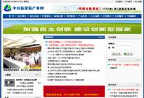 行业站案例:中国新能源产业网