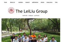 The LeiLiu Group